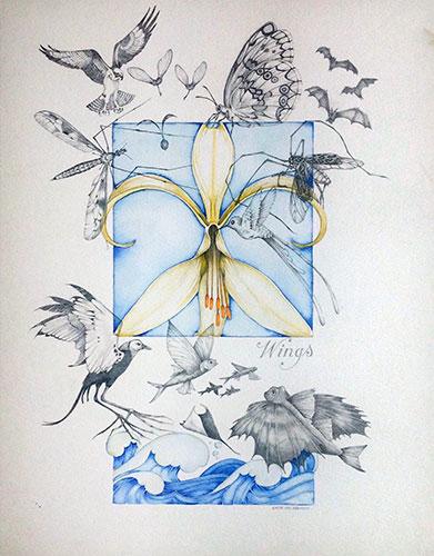 8-wings